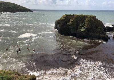 Swimming at Goat Island, Ardmore